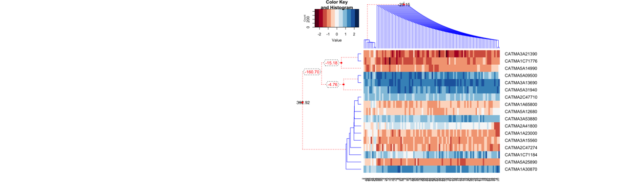 Bayesian Hierarchical Clustering (BHC)